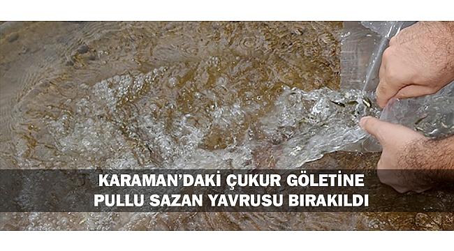 KARAMAN'DAKİ ÇUKUR GÖLETİNE PULLU SAZAN YAVRUSU BIRAKILDI