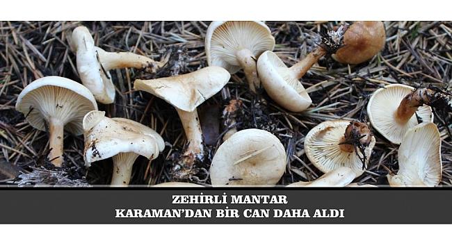 ZEHİRLİ MANTAR KARAMAN'DAN BİR CAN DAHA ALDI