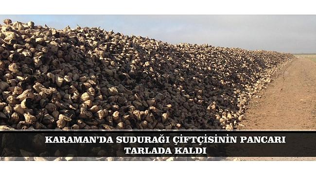 KARAMAN'DA SUDURAĞI ÇİFTÇİSİNİN PANCARI TARLADA KALDI