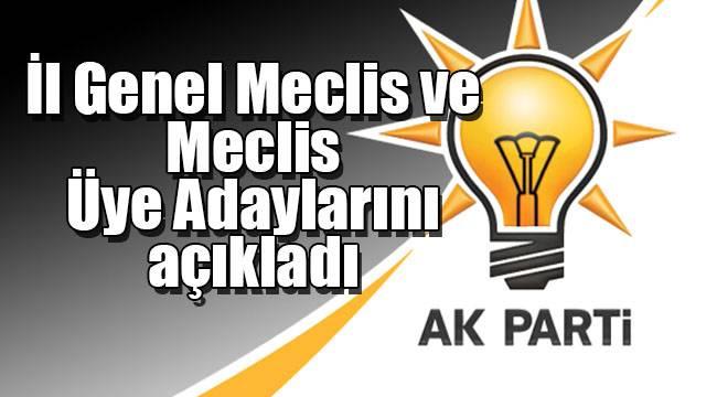 AK Parti İl Genel Meclis ve Meclis Üye Adaylarını açıkladı