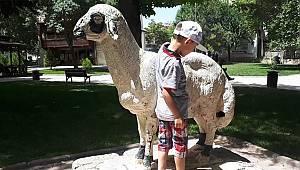 Karaman'ın koyunu sonra çıkar oyunu