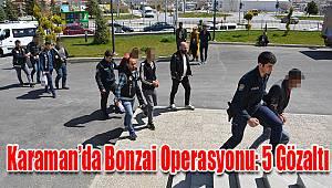 Karaman'da bonzai operasyonu: 5 gözaltı