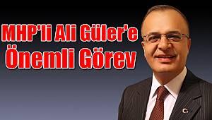MHP'li Ali Güler'e önemli görev