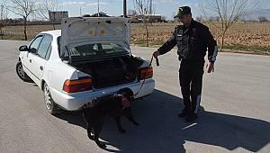 Karaman'da 13 şüpheli yakalandı
