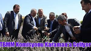 TBMM Komisyonu Karaman'a geliyor