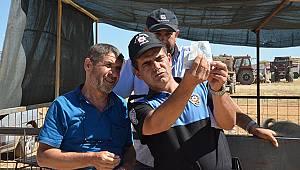 Polisten kurban satıcılarına sahte para uyarısı