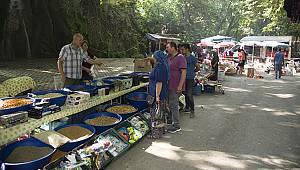 Zeyve Pazarı Ziyaretçi Akınına Uğruyor