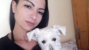 Kayıp köpek Ece, Her yerde aranıyor