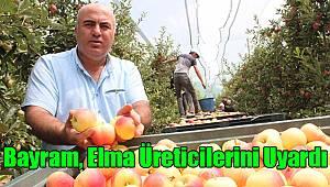 Mehmet Bayram Elma Üreticilerini Uyardı