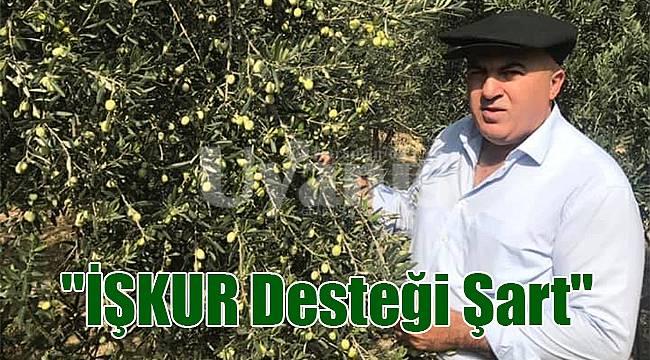 Mehmet Bayram: