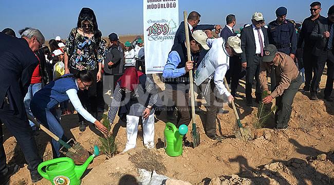 Karaman'da 100 Bin Fidan Toprakla Buluştu