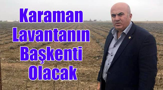 Karaman'da Lavantanın Başkenti Olacak