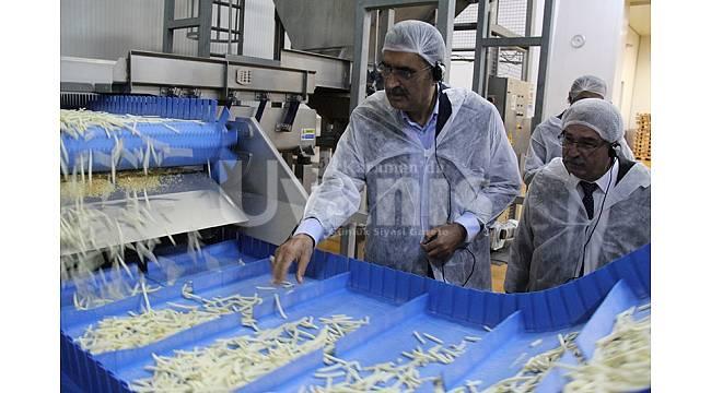 Konya Şeker'den Patates Bedeli Ödemesi
