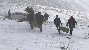 Karaman'da yaban hayvanlarına besin takviyesi