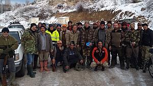 Karaman'da Yaban Domuzu Sürek Avları Düzenlendi