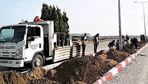 Orta refüjlerde ağaçlandırma çalışması devam ediyor