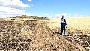 Karaman'da 18 dekar alandaki arpa yandı