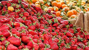 Karaman'da fiyatı en çok artan ürün Çilek oldu
