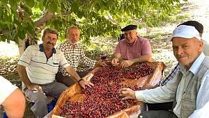 Başkan Bayram kiraz üreticilerini ziyaret etti