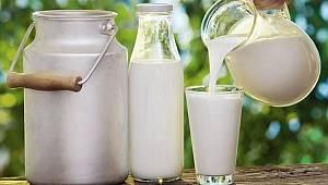 Çiğ süt desteği ödemesi cuma günü yapılacak