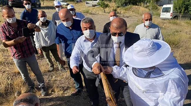 Karaman'da bal hasadı başladı
