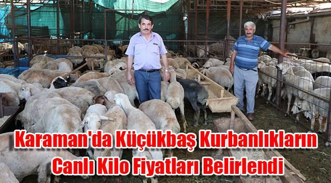 Karaman'da Küçükbaş Kurbanlıkların Canlı Kilo Fiyatları Belirlendi