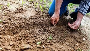 Çiftçiler devletten yapılandırma bekliyor