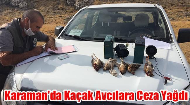 Karaman'da kaçak avcılara ceza yağdı