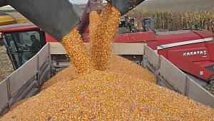 Bayram'dan mısır üreticilerine uyarı