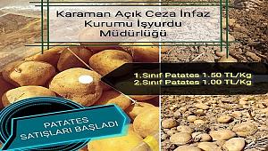 Karaman Açık Cezaevinde patates satışları başladı