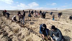 Karaman'da fidanlar toprakla buluştu