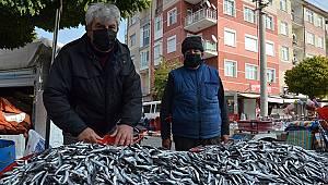 Karamanlıların balık tercihi hamsi