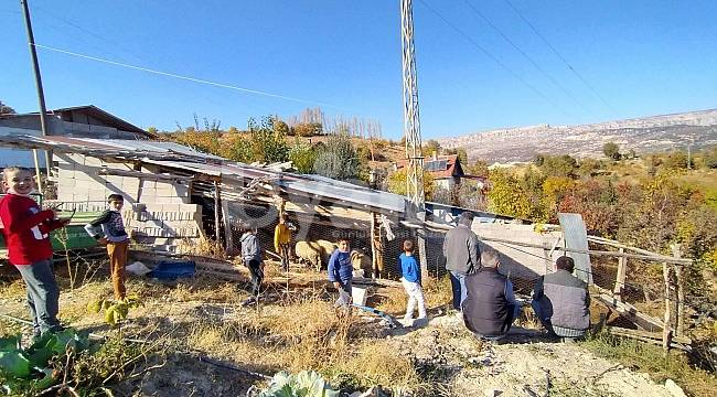 Karaman'da Kurtlar Köye Dadandı