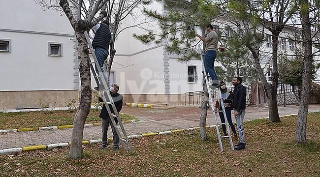 Karaman'da öğretmenler kuş evleri yaptı