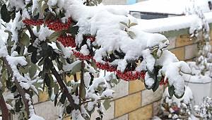 Karaman Buz Tuttu, Sıcaklık Eksi 12'i Gördü