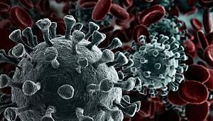 Karaman'da İki Kişide Mutasyonlu Virüs Tespit Edildi