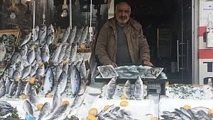 Pandemi Balık Sektörünü De Vurdu