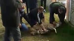 Karaman Belediyespor başarı için kurban kesti