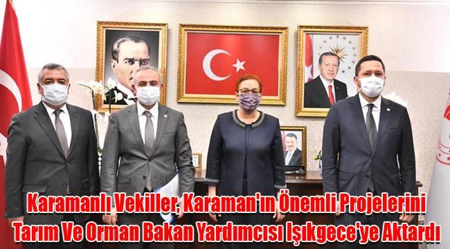 Karamanlı Vekiller, Karaman'ın Önemli Projelerini Tarım Ve Orman Bakan Yardımcısı Işıkgece'ye Aktardı