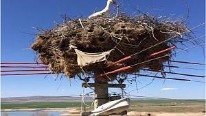 Çevreci Ve Doğal Yaşamı Koruyan Kaliteli Yerli Hizmet