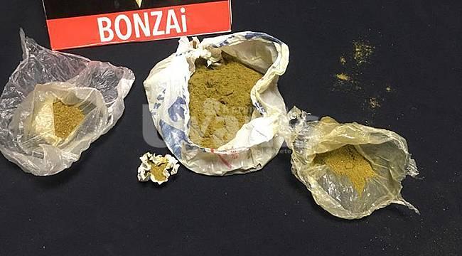Karaman'da bonzai ele geçirildi