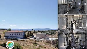 Ermenek'te Mezbaha Kurban Kesim Fiyatları Belirlendi