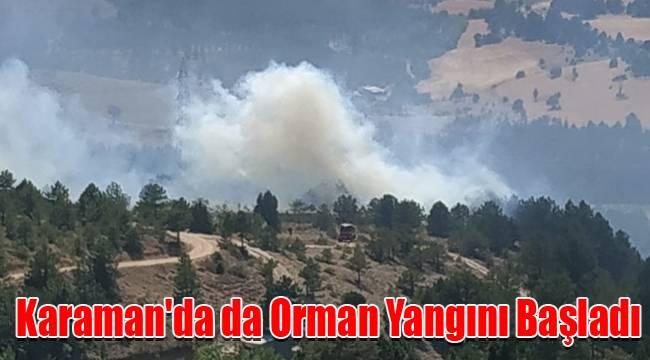 Karaman'da da Orman Yangını Başladı