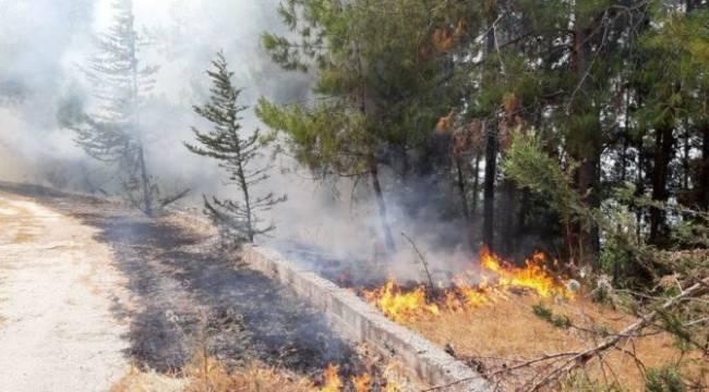 Ayrancı'da çıkan orman yangını büyümeden söndürüldü