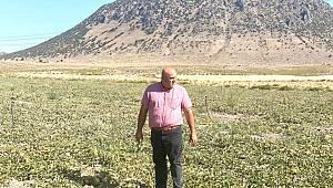 Bayram: Çiftçimizin Ekim Cesareti Kırılmamalı