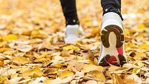 Sağlığınız için günde en az 30 dakika yürüyüş yapın