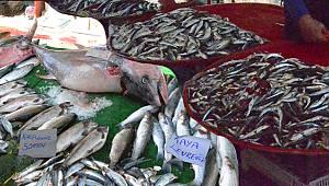 Tezgahlarda en çok tercih edilen balık hamsi 20 TL