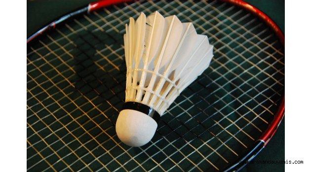 essay playing badminton