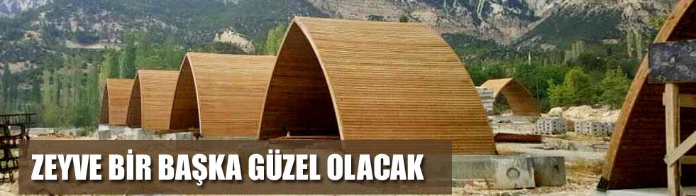 ZEYVE MESİRE ALANI
